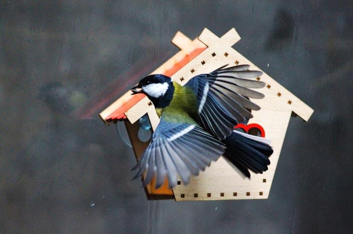 Кормушка для птиц оконная